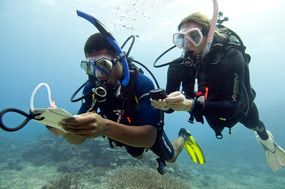 Corsi Sub Specialità Underwater Navigator